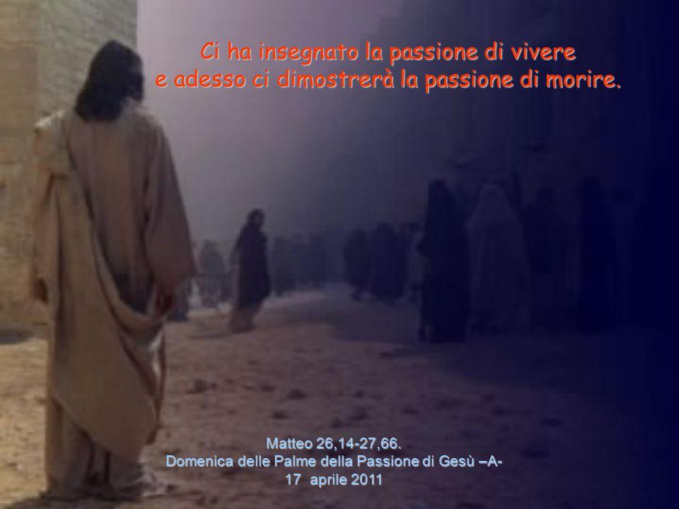 Matteo 26,14-27,66. Domenica delle Palme della Passione di Gesù –A-