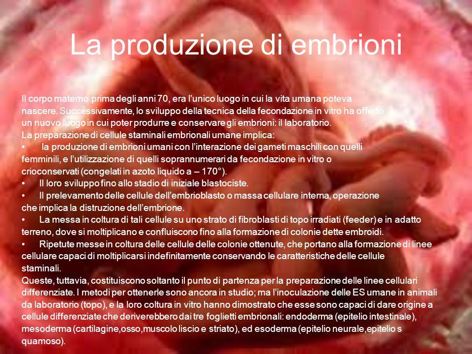 La produzione di embrioni
