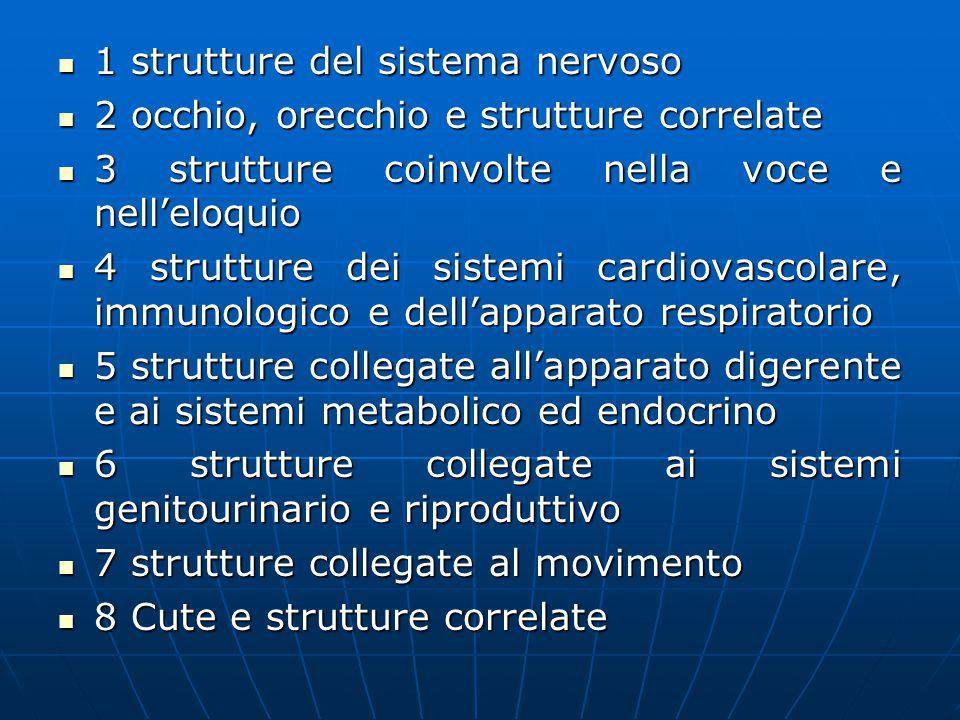 1 strutture del sistema nervoso