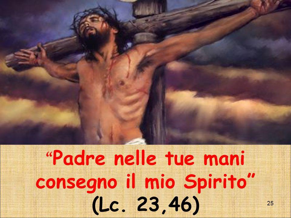 Padre nelle tue mani consegno il mio Spirito (Lc. 23,46)