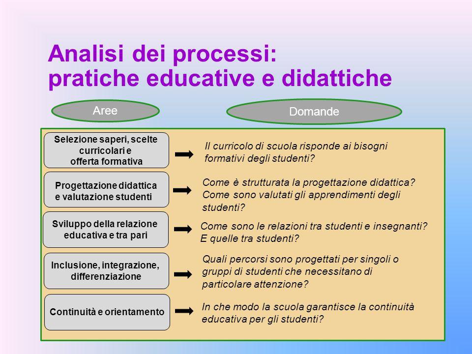 Analisi dei processi: pratiche educative e didattiche