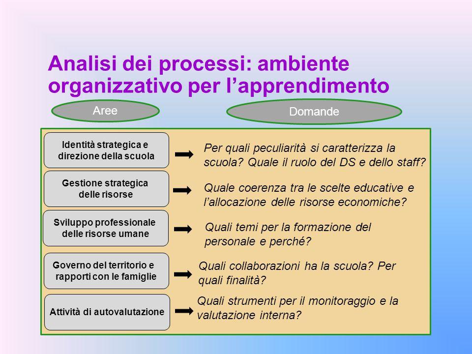 Analisi dei processi: ambiente organizzativo per l'apprendimento