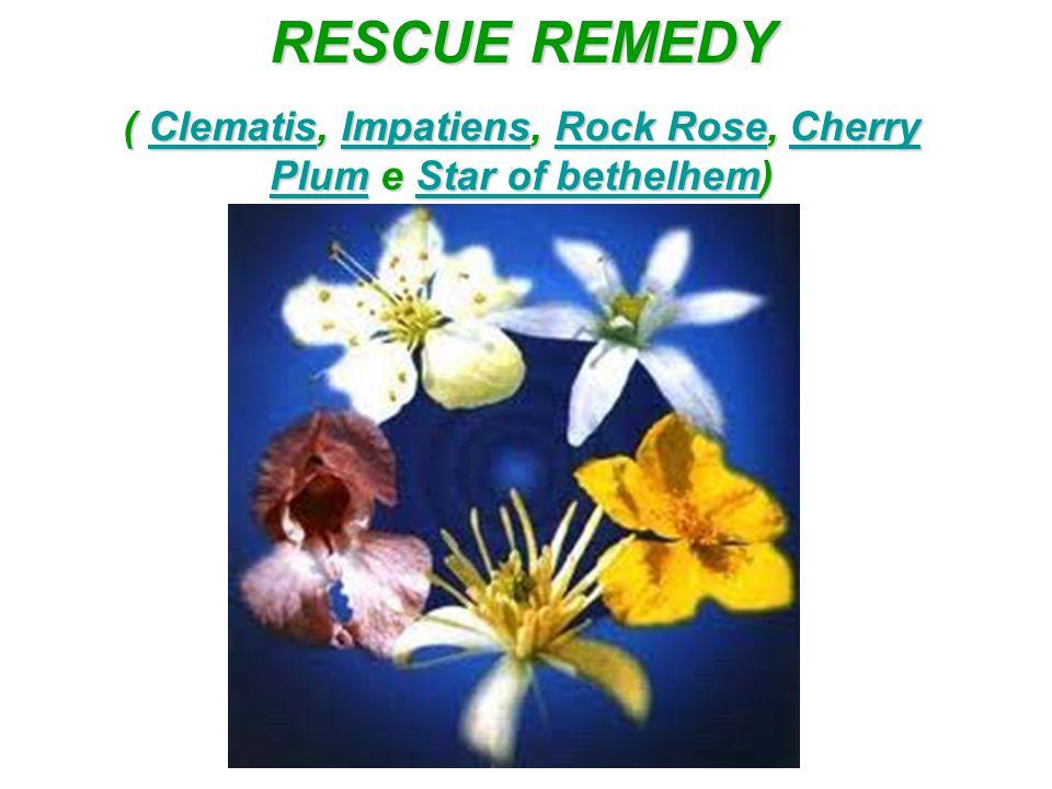 ( Clematis, Impatiens, Rock Rose, Cherry Plum e Star of bethelhem)