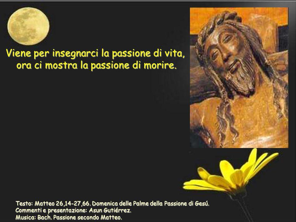 Viene per insegnarci la passione di vita, ora ci mostra la passione di morire.