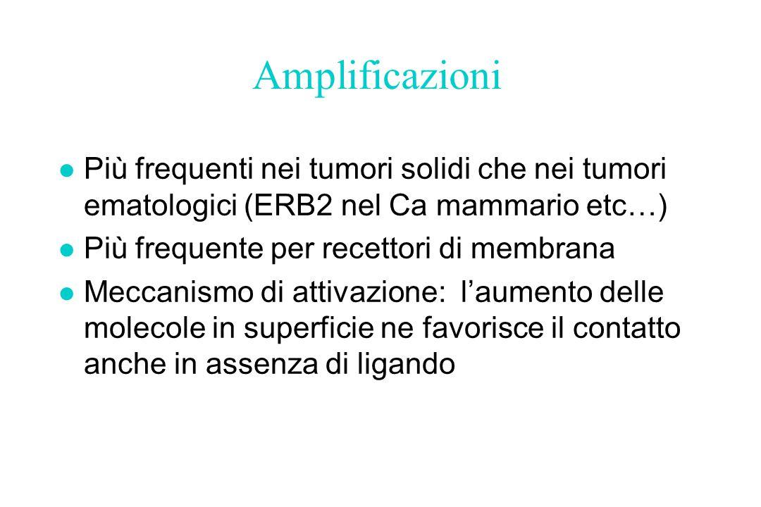 Amplificazioni Più frequenti nei tumori solidi che nei tumori ematologici (ERB2 nel Ca mammario etc…)