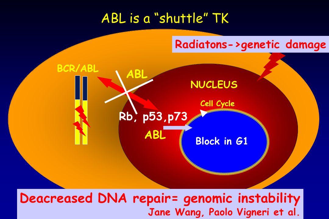 Radiatons->genetic damage
