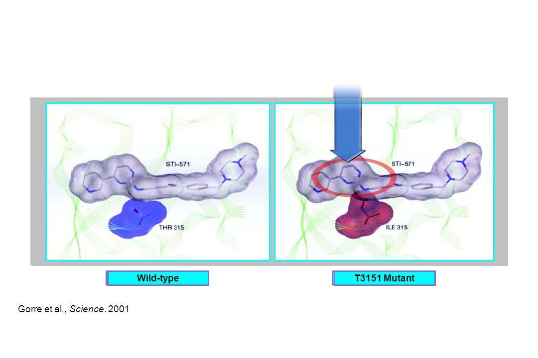 Wild-type Wild-type T3151 Mutant T3151 Mutant Gorre et al., Science. 2001