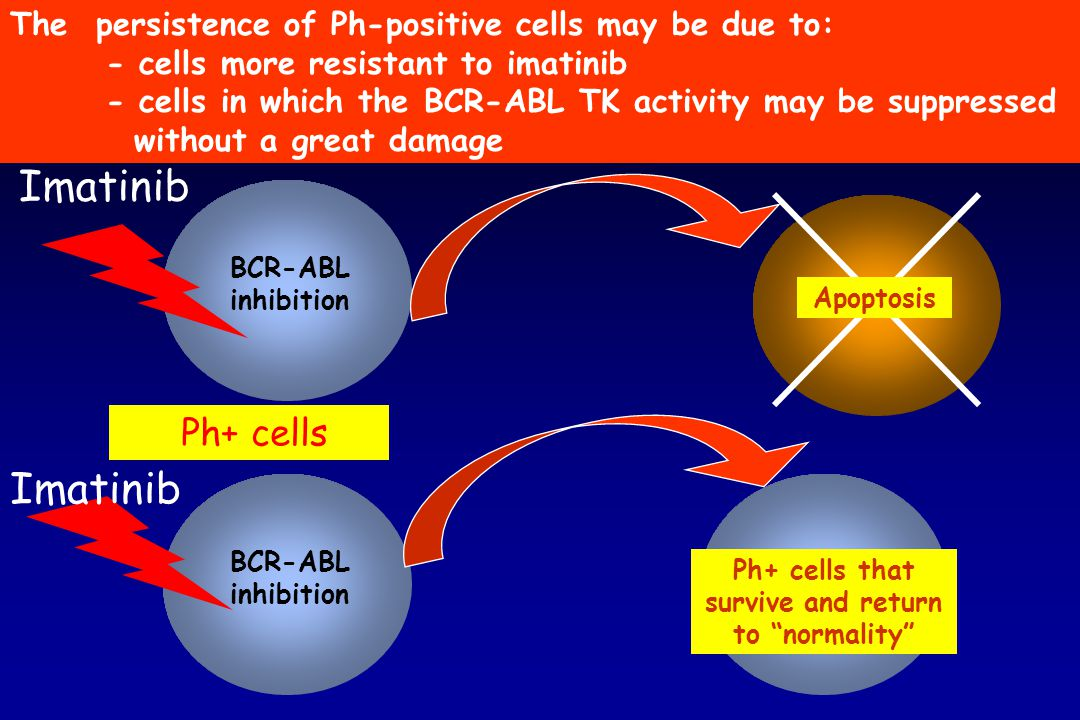 Ph+ cells that survive and return