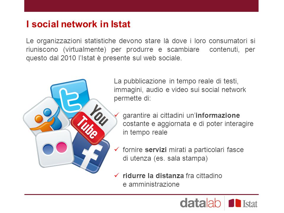 I social network in Istat