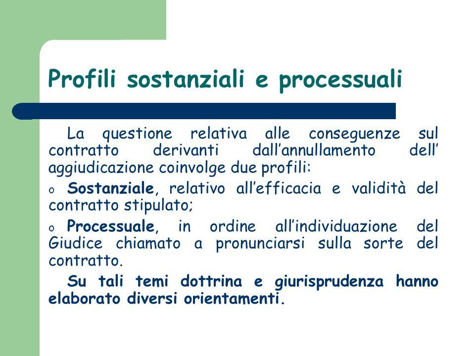 Profili sostanziali e processuali