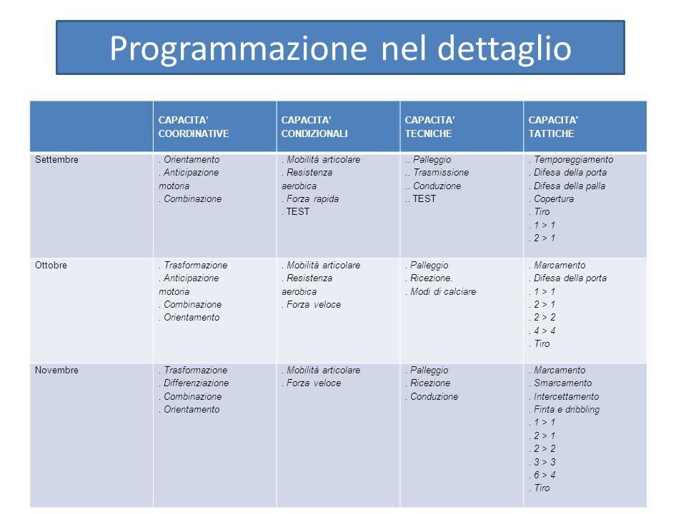 Programmazione nel dettaglio