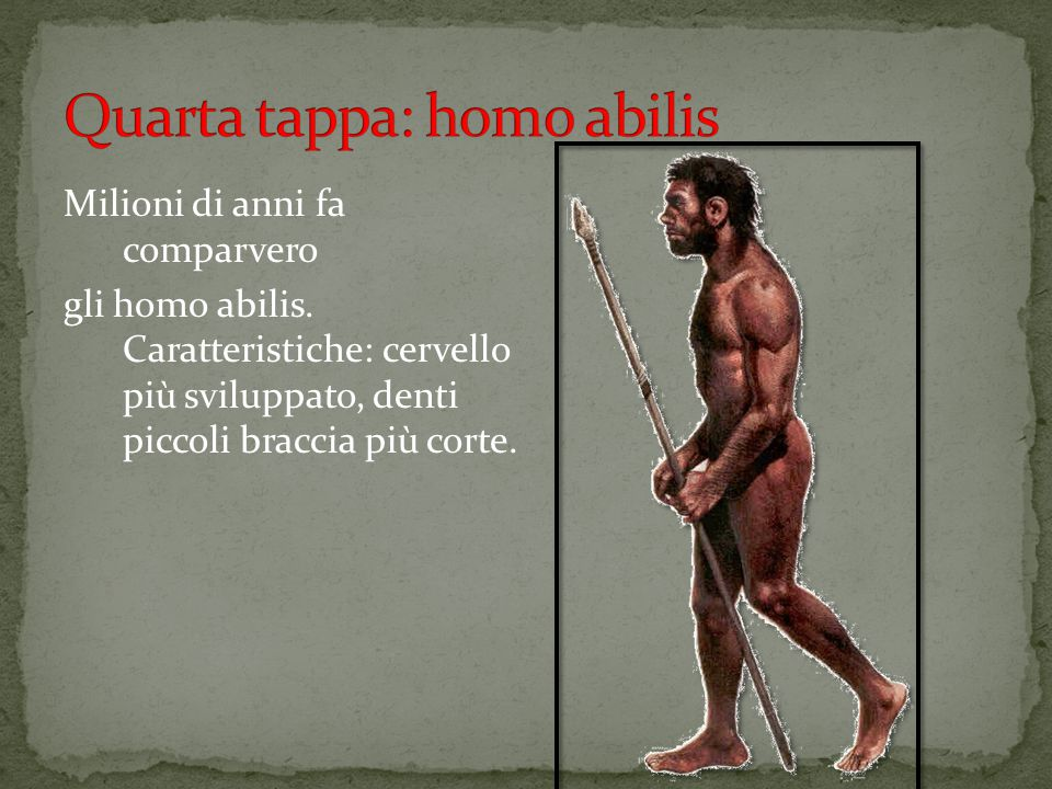 Quarta tappa: homo abilis