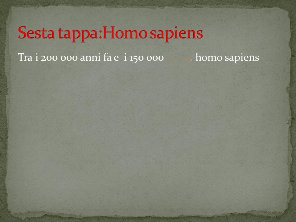 Sesta tappa:Homo sapiens