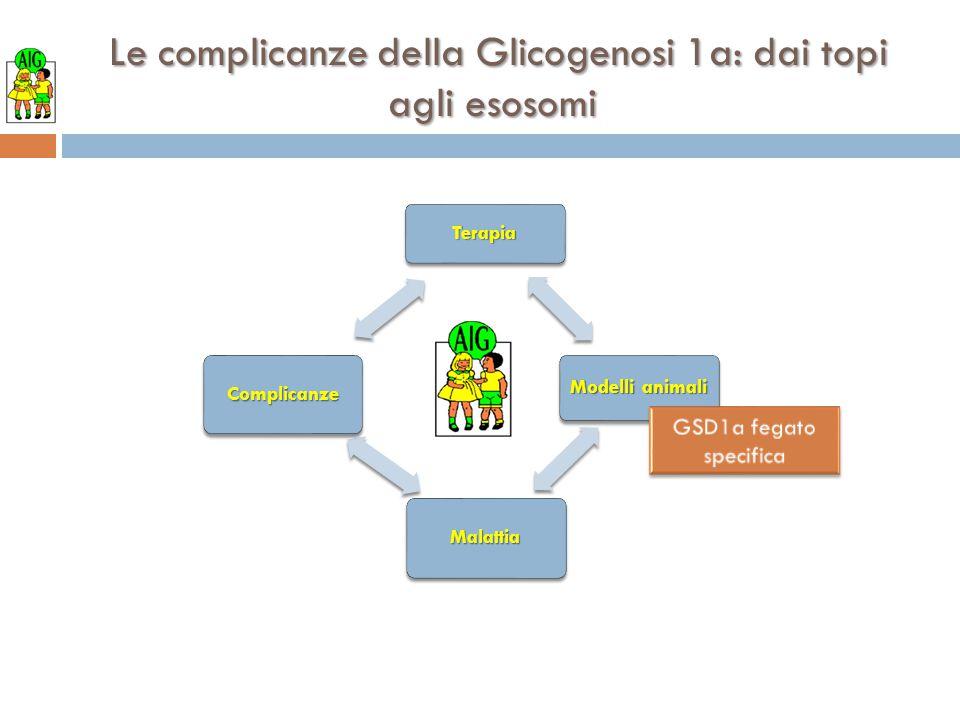 Le complicanze della Glicogenosi 1a: dai topi agli esosomi