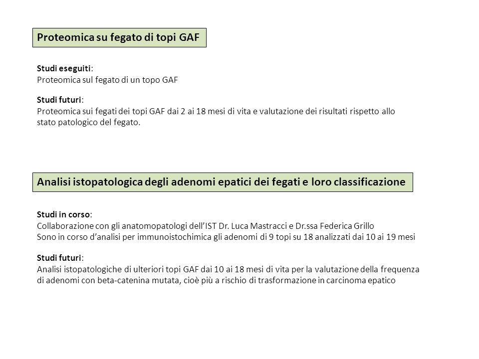 Proteomica su fegato di topi GAF