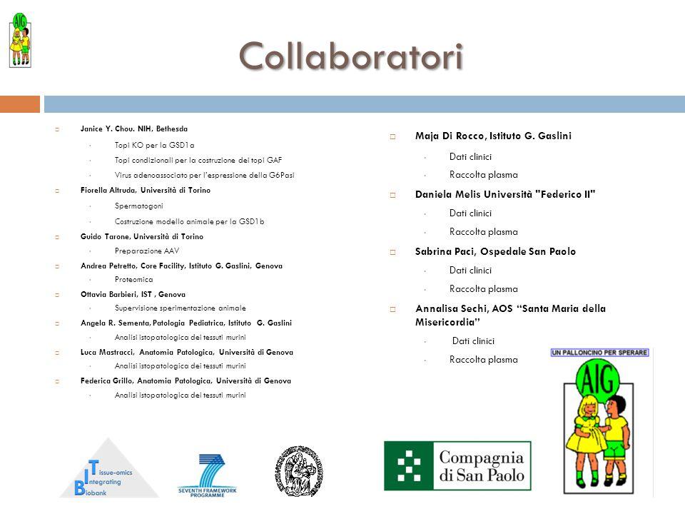 Collaboratori Maja Di Rocco, Istituto G. Gaslini