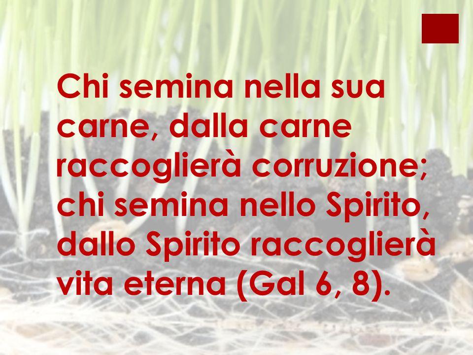Chi semina nella sua carne, dalla carne raccoglierà corruzione; chi semina nello Spirito, dallo Spirito raccoglierà vita eterna (Gal 6, 8).