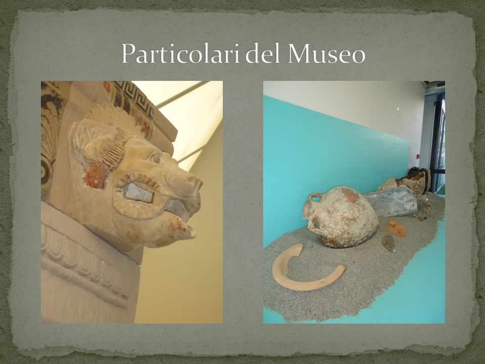 Particolari del Museo