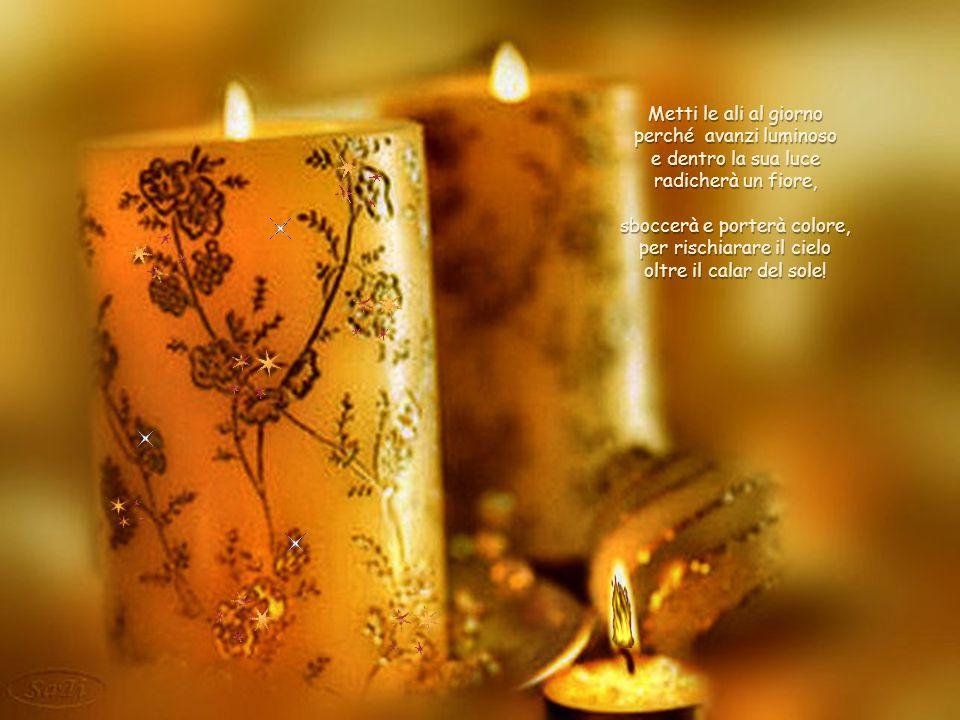 perché avanzi luminoso e dentro la sua luce radicherà un fiore,