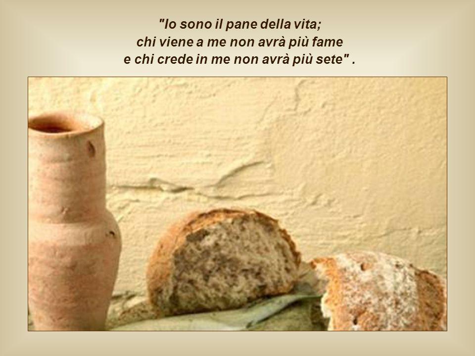 Io sono il pane della vita; chi viene a me non avrà più fame e chi crede in me non avrà più sete .
