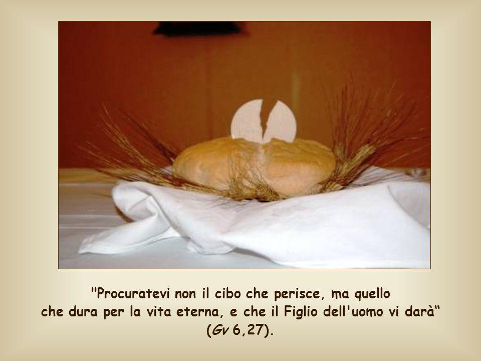 Procuratevi non il cibo che perisce, ma quello che dura per la vita eterna, e che il Figlio dell uomo vi darà (Gv 6,27).