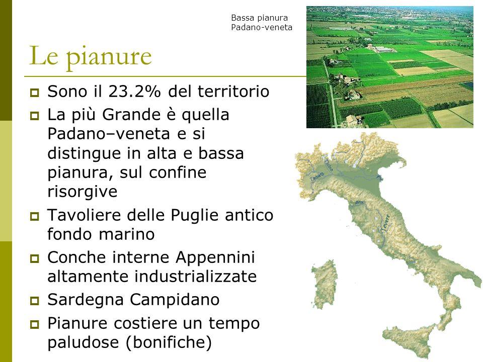 Le pianure Sono il 23.2% del territorio