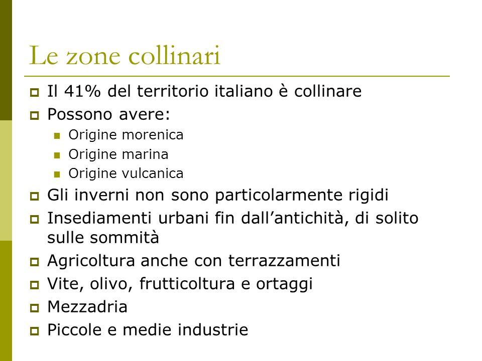 Le zone collinari Il 41% del territorio italiano è collinare
