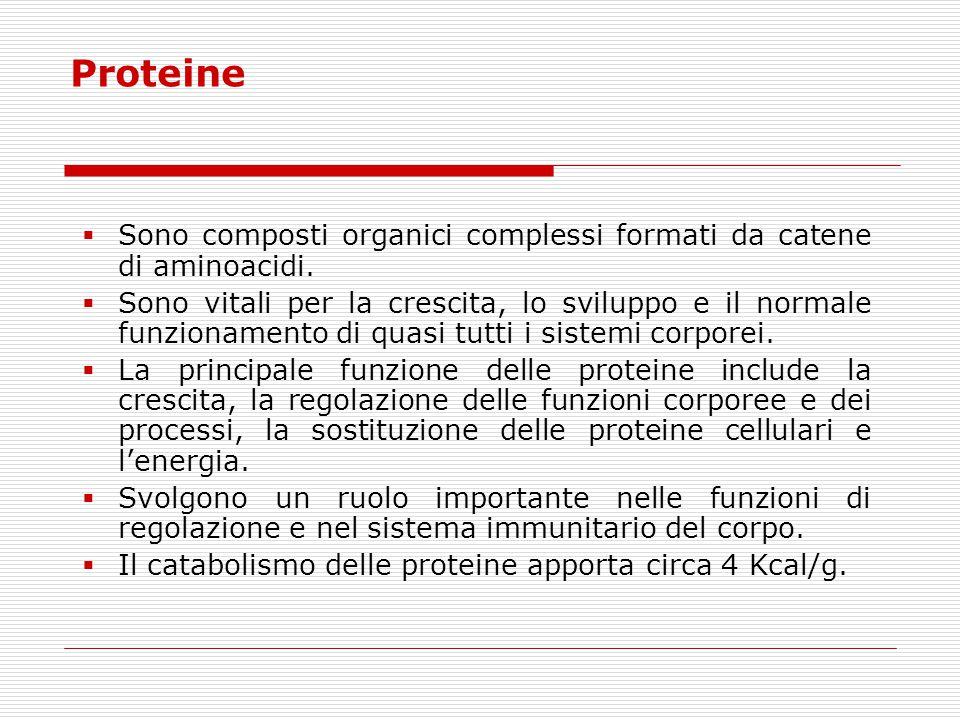 Proteine Sono composti organici complessi formati da catene di aminoacidi.