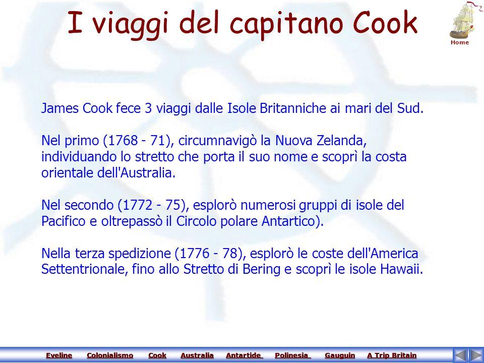 I viaggi del capitano Cook