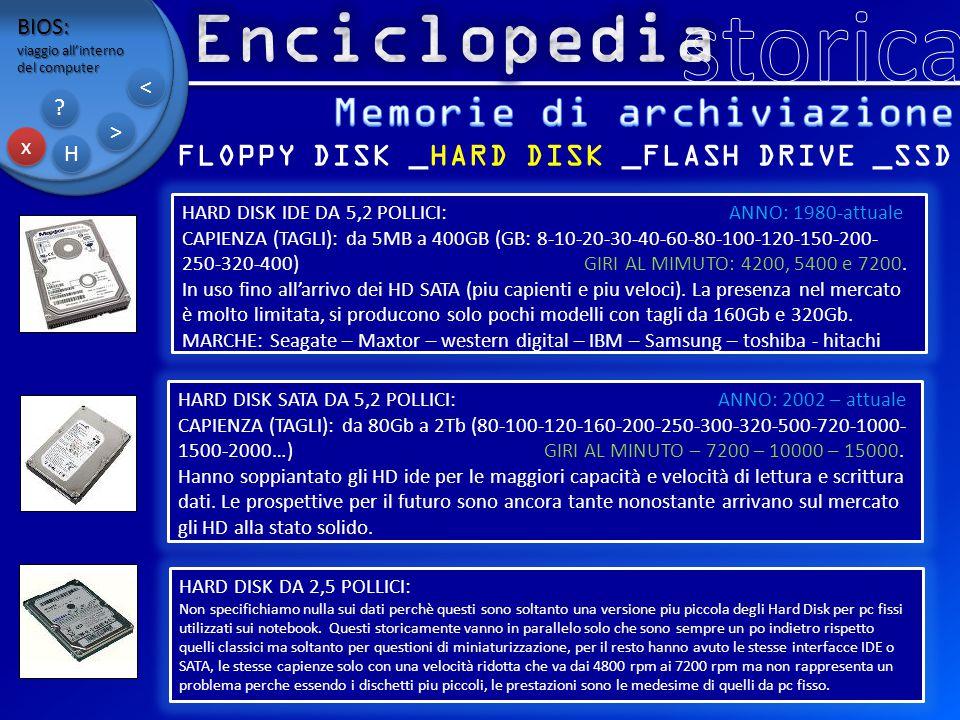 Memorie di archiviazione FLOPPY DISK _HARD DISK _FLASH DRIVE _SSD