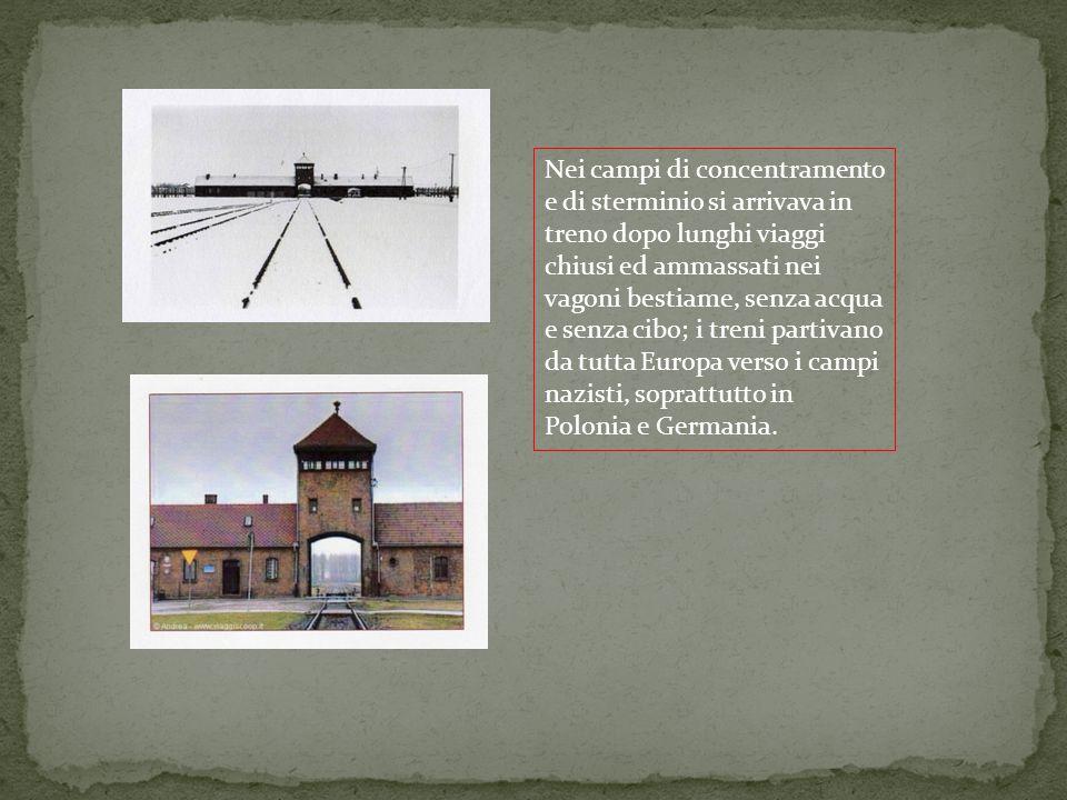 Nei campi di concentramento e di sterminio si arrivava in treno dopo lunghi viaggi chiusi ed ammassati nei vagoni bestiame, senza acqua e senza cibo; i treni partivano da tutta Europa verso i campi nazisti, soprattutto in Polonia e Germania.