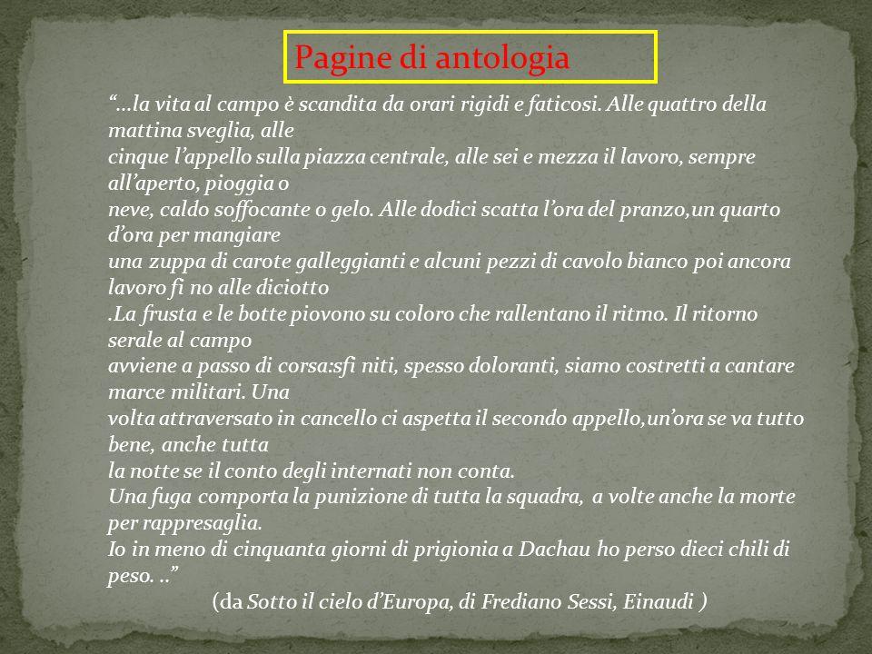 (da Sotto il cielo d'Europa, di Frediano Sessi, Einaudi )