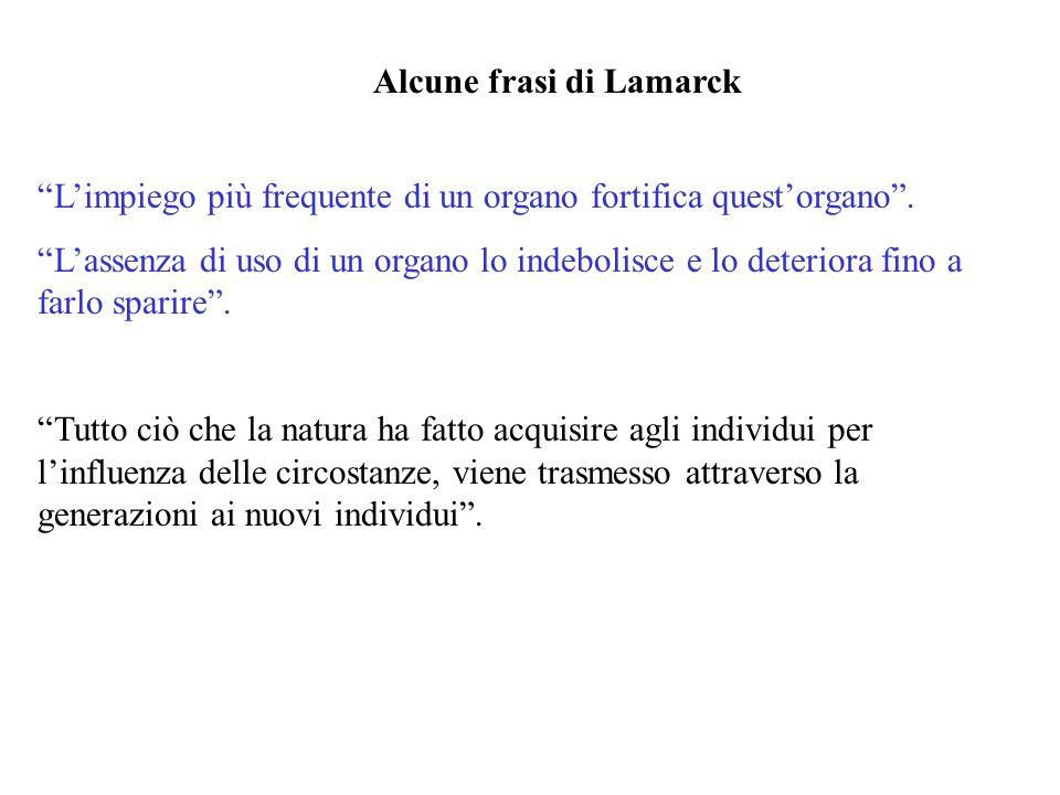 Alcune frasi di Lamarck