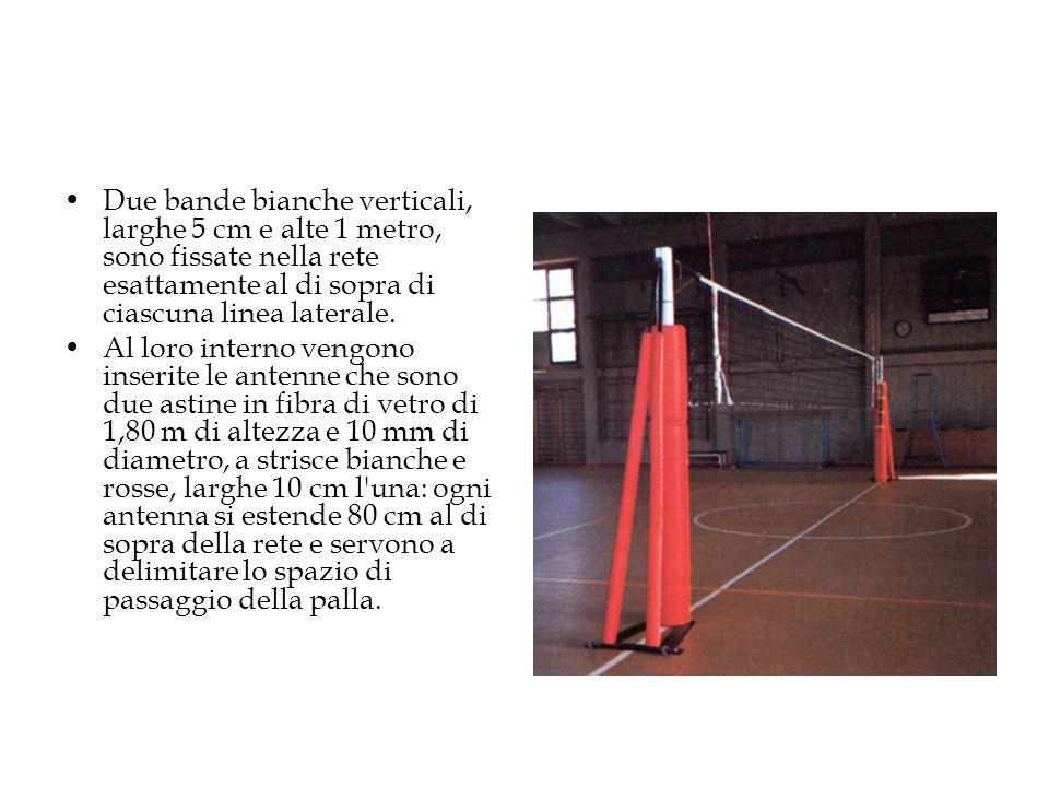 Due bande bianche verticali, larghe 5 cm e alte 1 metro, sono fissate nella rete esattamente al di sopra di ciascuna linea laterale.