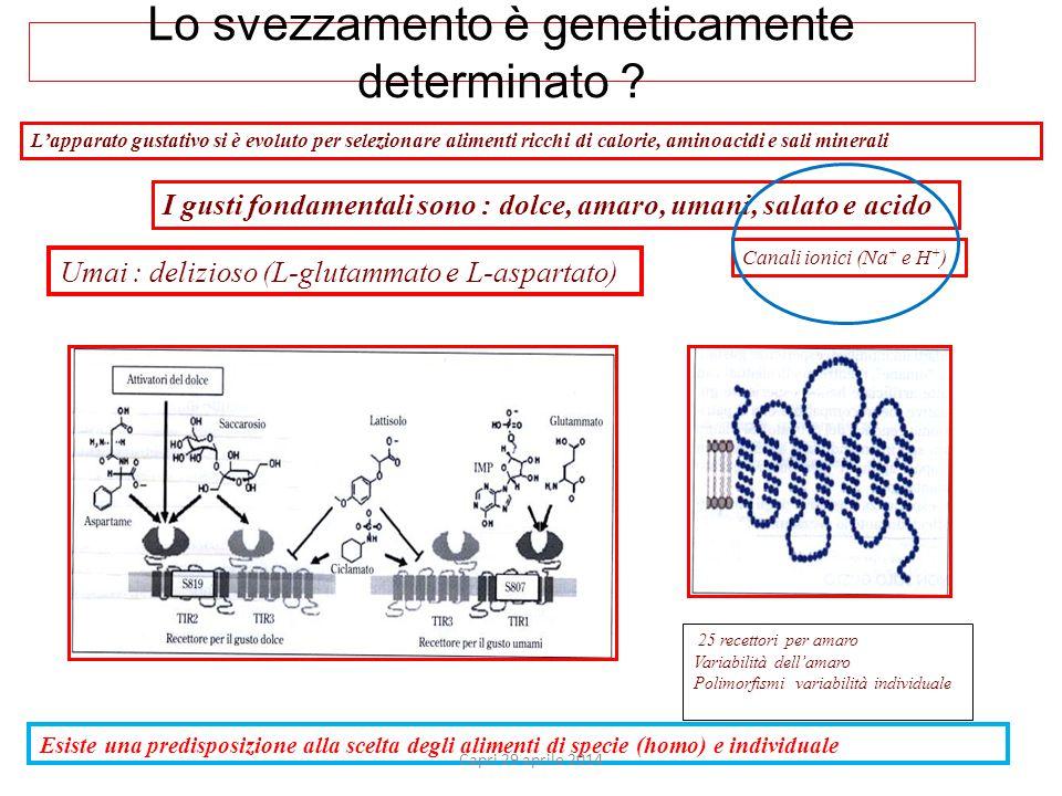 Lo svezzamento è geneticamente determinato