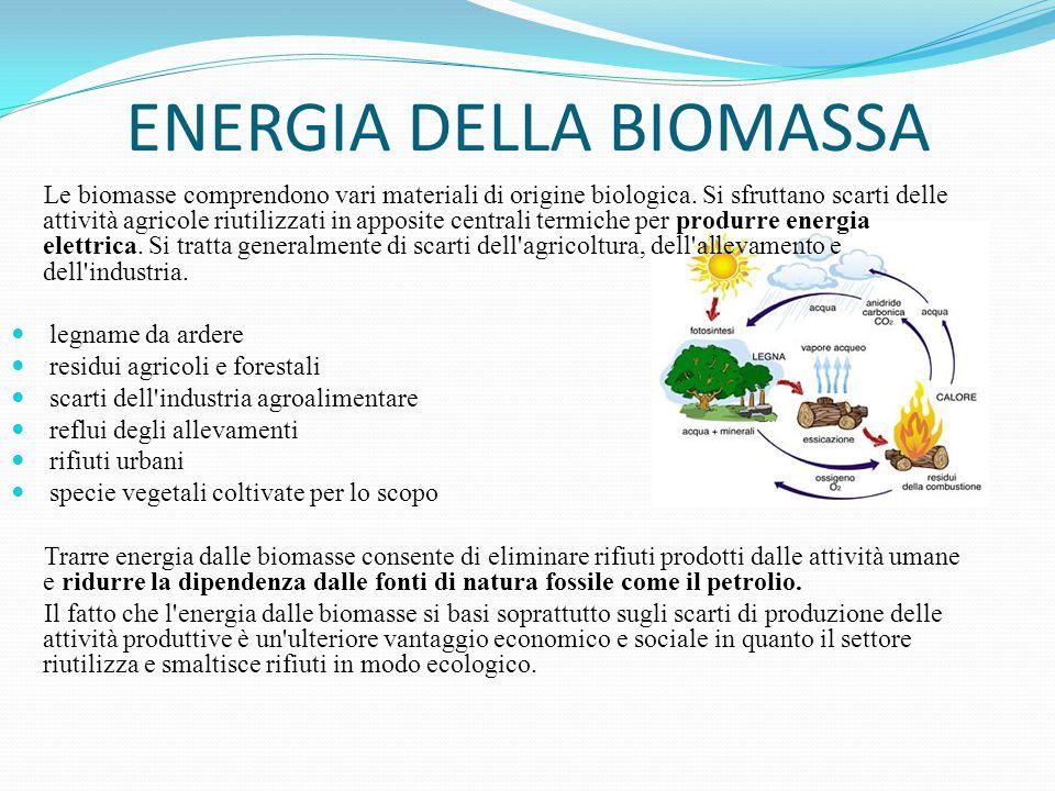 ENERGIA DELLA BIOMASSA