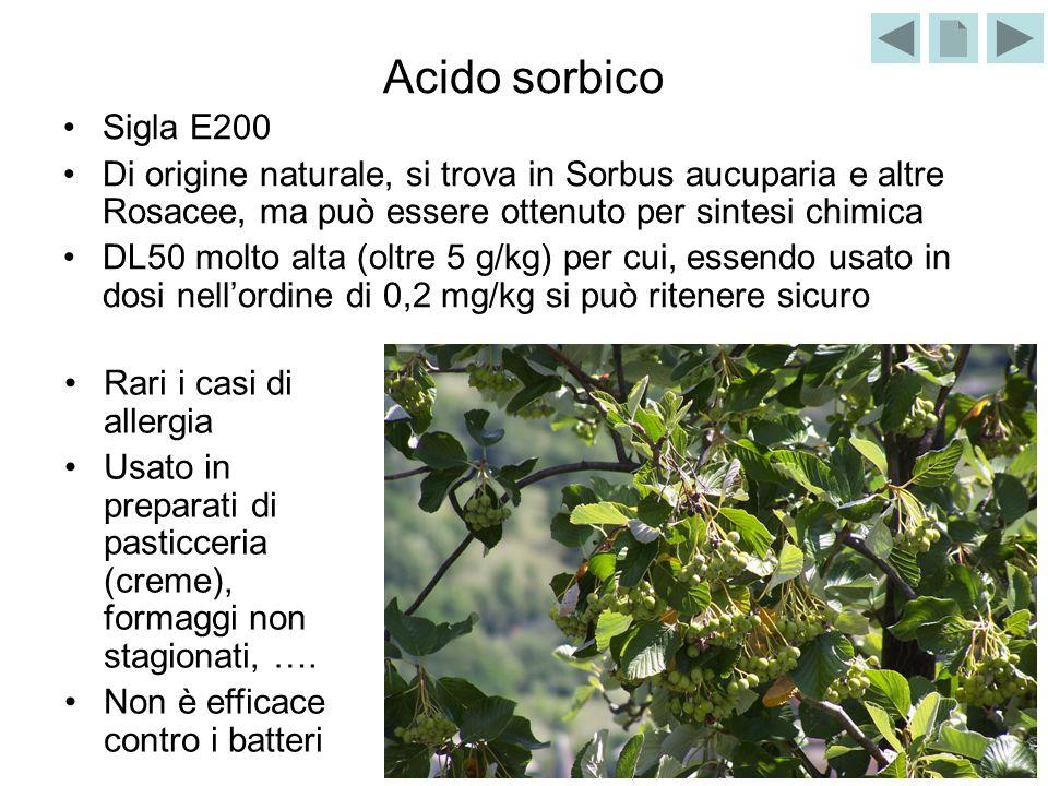 Acido sorbico Sigla E200. Di origine naturale, si trova in Sorbus aucuparia e altre Rosacee, ma può essere ottenuto per sintesi chimica.