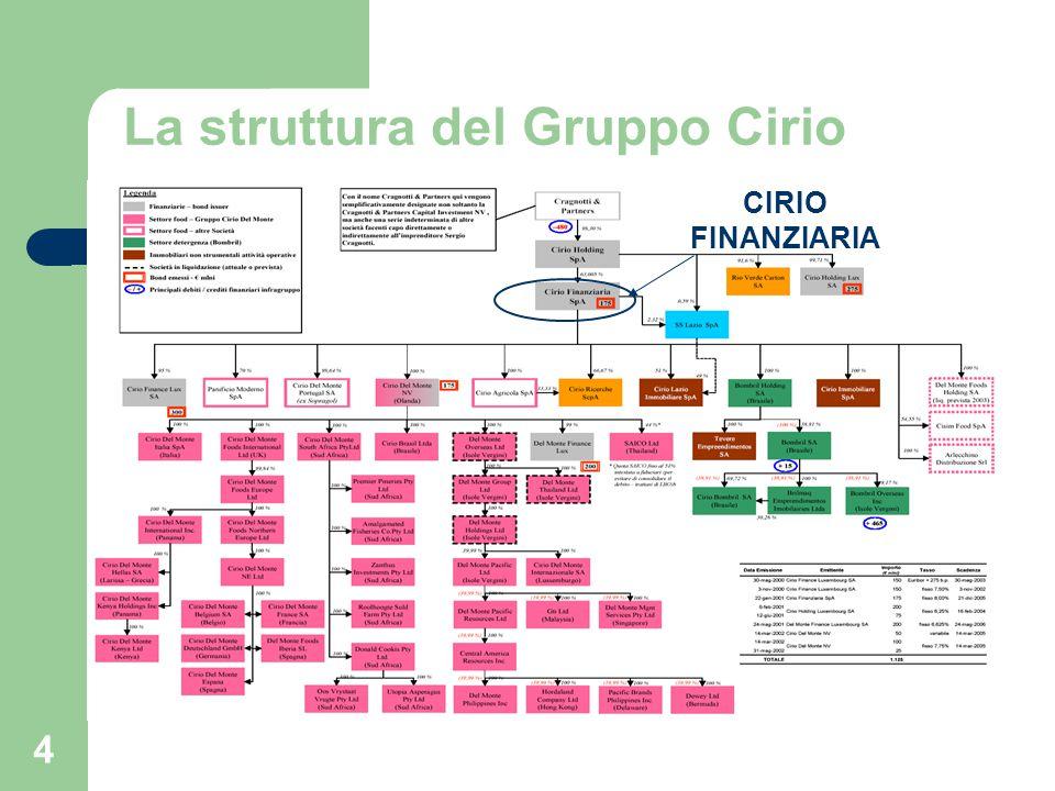 La struttura del Gruppo Cirio