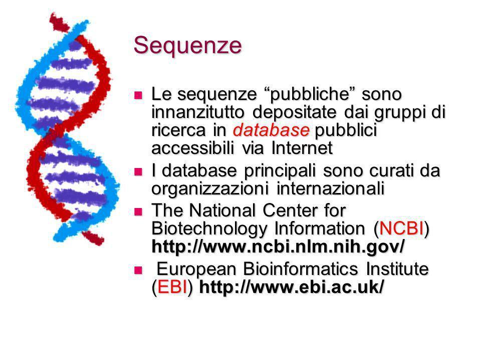 Sequenze Le sequenze pubbliche sono innanzitutto depositate dai gruppi di ricerca in database pubblici accessibili via Internet.