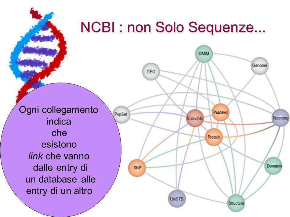 NCBI : non Solo Sequenze...