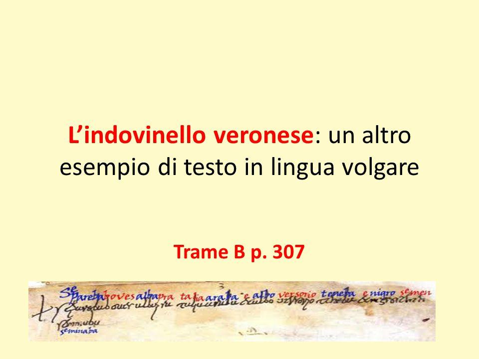 L'indovinello veronese: un altro esempio di testo in lingua volgare