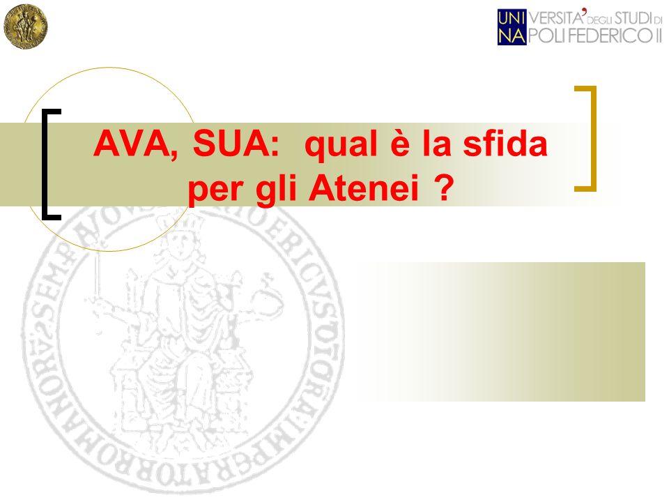 AVA, SUA: qual è la sfida per gli Atenei