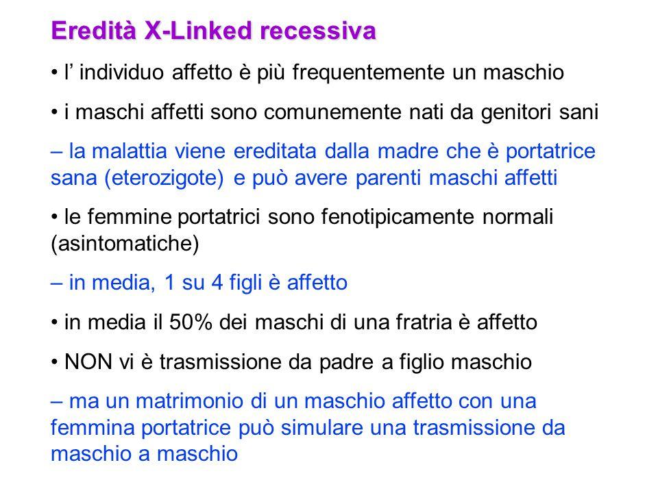 Eredità X-Linked recessiva
