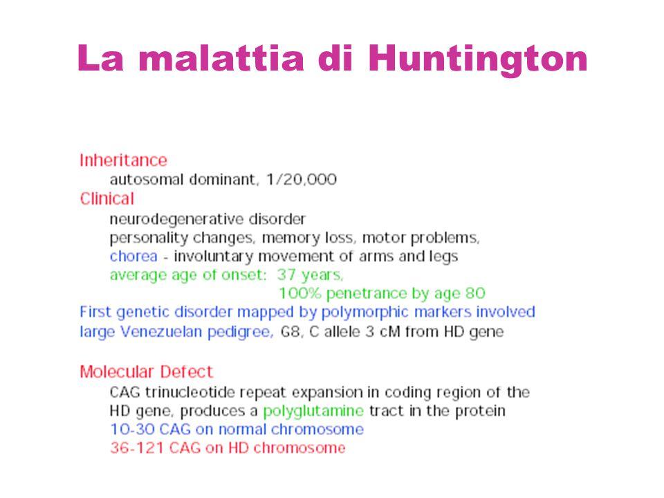 La malattia di Huntington
