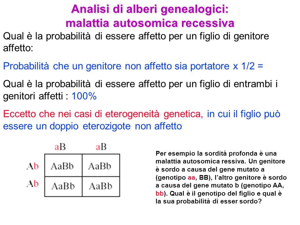 Analisi di alberi genealogici: