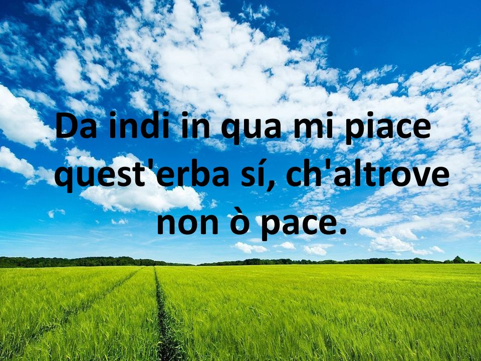 Da indi in qua mi piace quest erba sí, ch altrove non ò pace.