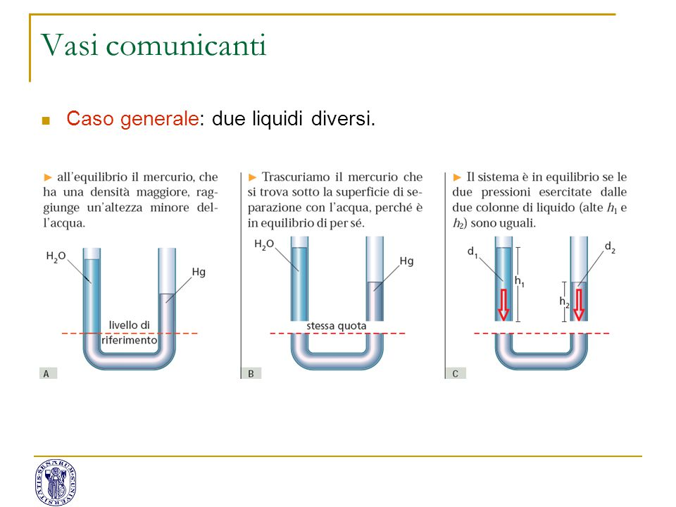 Vasi comunicanti Caso generale: due liquidi diversi.
