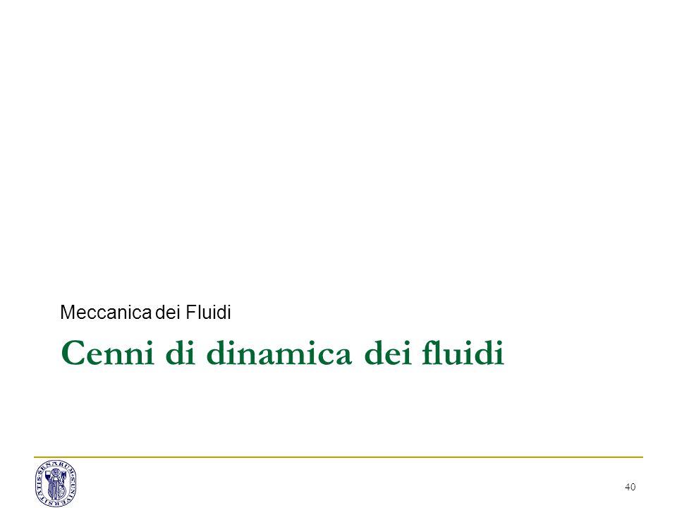 Cenni di dinamica dei fluidi