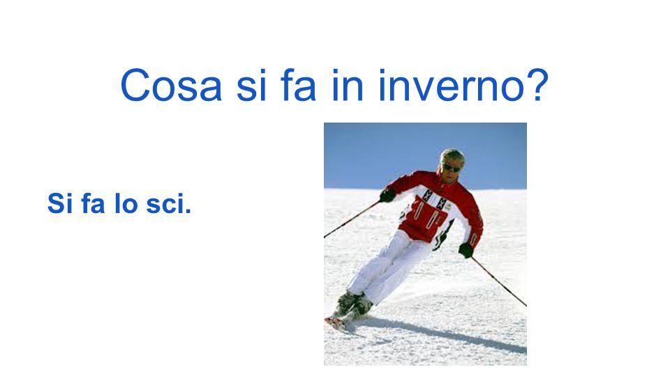 Cosa si fa in inverno Si fa lo sci.