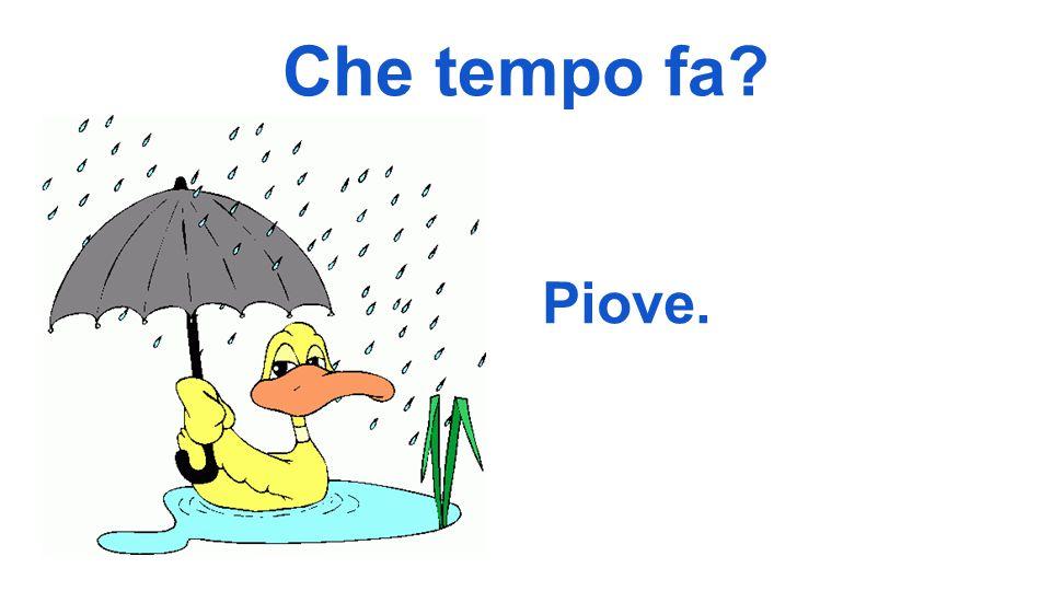 Che tempo fa Piove.